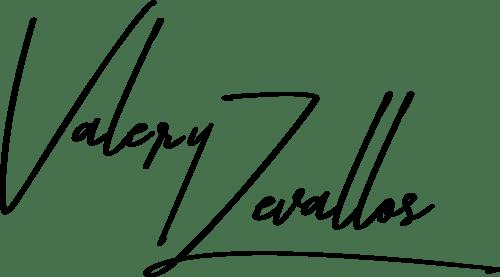 logo_vz_negro
